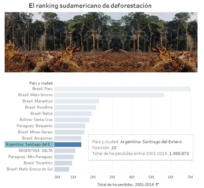 Deforestacion (3)