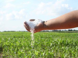 Venezuela y Surinam ven acuerdos agrícolas