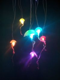 Jellyfish Lighting Ideas For Your Home | Ultimate Home Ideas