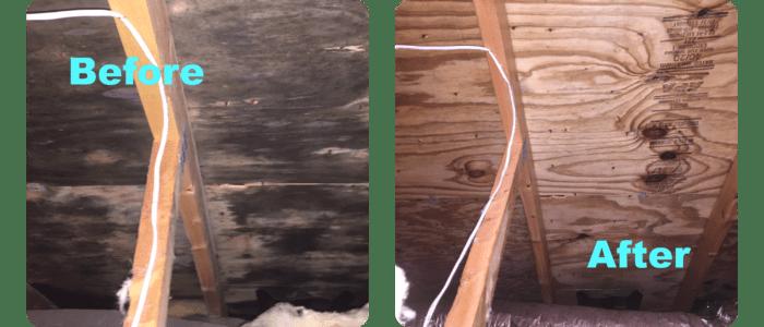 Attic-Mold-Removal-cost-in-toronto