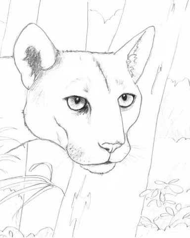 Free Download — The Endangered Animals Coloring Book
