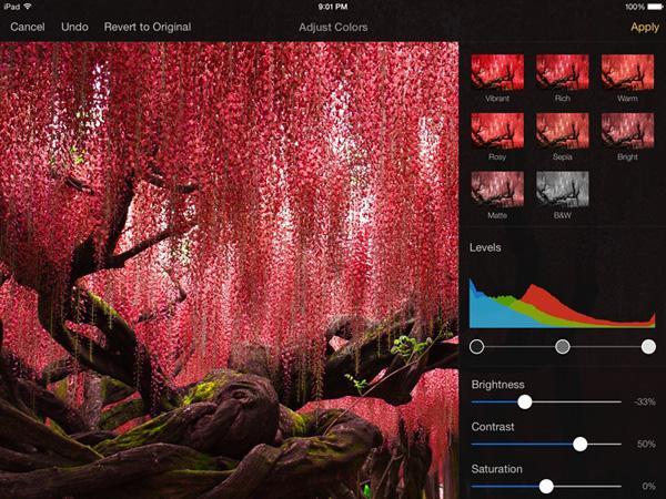 Pixelmator iPad 2 - Pixelmator iPad Pro, Meilleure Alternative à Photoshop (gratuit)
