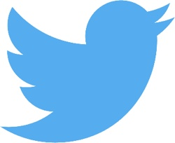 Twitter Issues iOS App Update to Fix Buggy Auto-Refresh Timeline Behavior