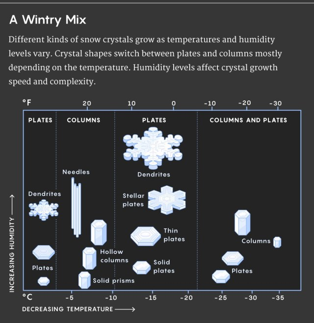 diagram of snowflakes