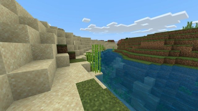 Some sugar cane by a river