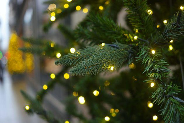 Le maire écolo de Bordeaux supprime le sapin de Noël , un