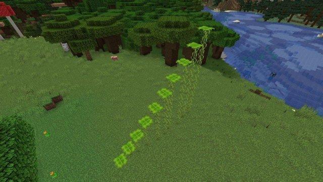 Minecraft Caves And Cliffs Update Leaf Platform