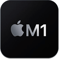 m1 puce icon