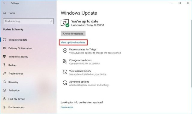 Windows 10 optional updates option for drivers