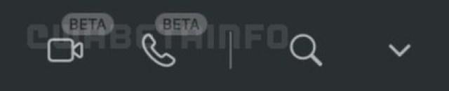 WA CALLS BUTTON BETA WEB