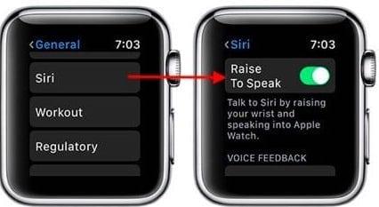Raise to Speak Siri Apple Watch