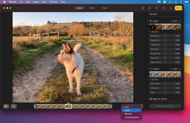 Live Photos effects dropdown menu on Mac