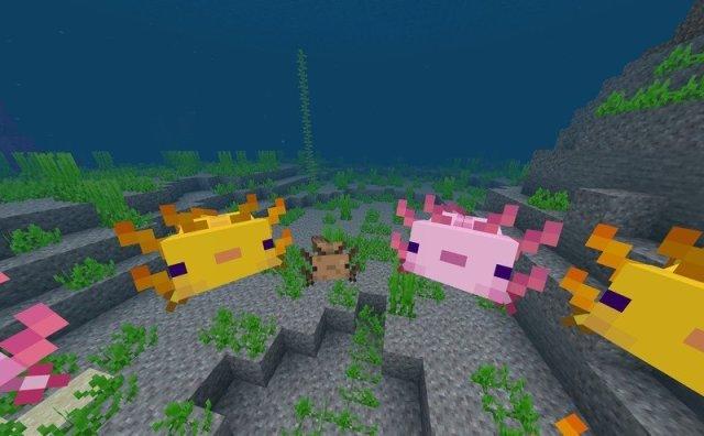 Minecraft Caves And Cliffs Update Axolotl