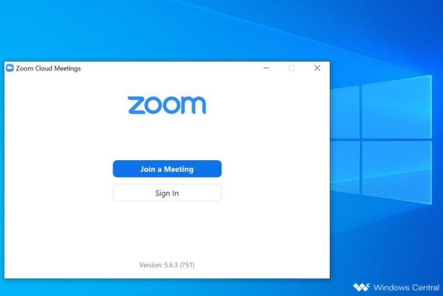 Zoom Windows