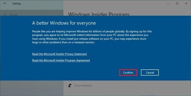 Windows Insider Program terms