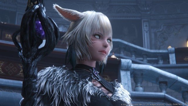 Final Fantasy Xiv Endwalker Cat