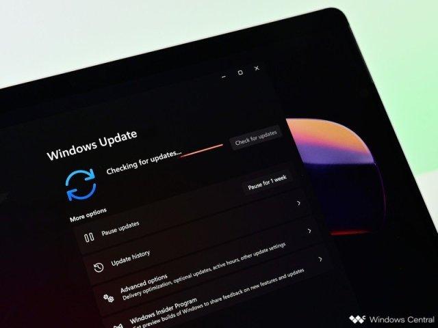 Windows 11 Update Checkforupdate Dark