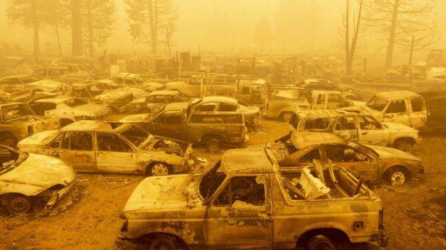 Des véhicules brûlés après le passade de l'incendie Dixie, vendredi 6 août 2021, à Greenville (Californie, Etats-Unis). (JOSH EDELSON / AFP)