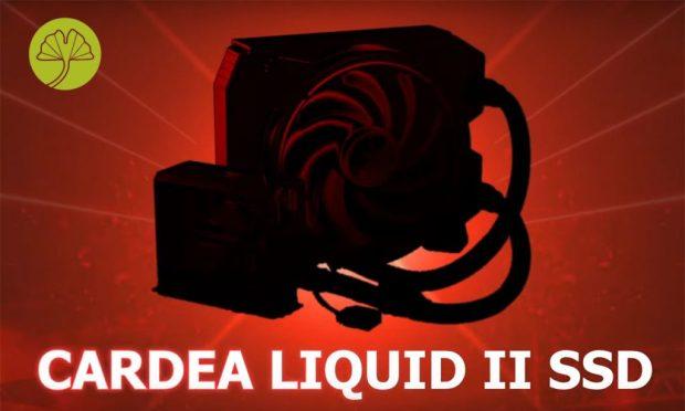 Cardea Liquid II SSD