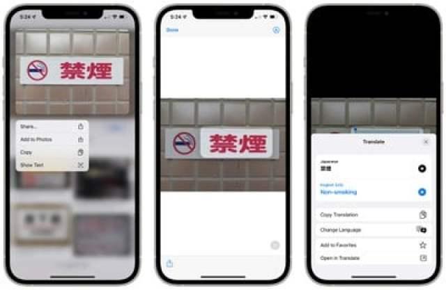 safari translate live text interface