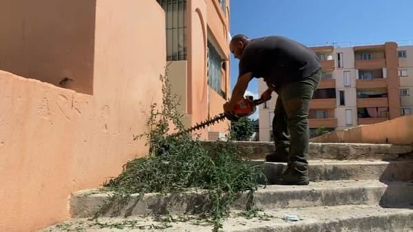 Un paysagiste en train de déblayer des escaliers de la cité Bassens à Marseille.