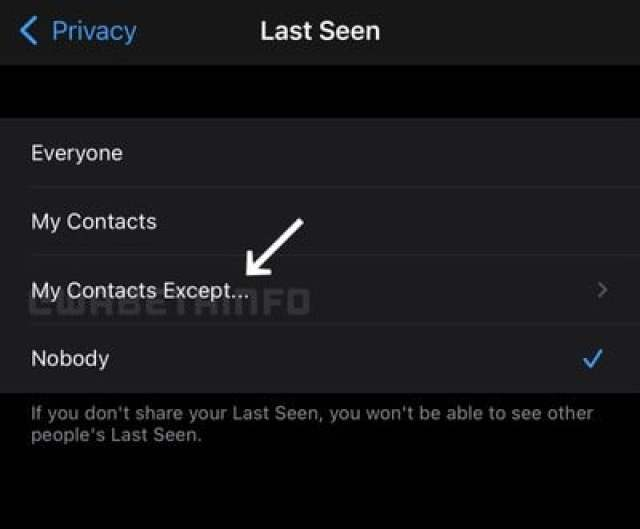 Whatsapp PRIVACY SETTINGS MY CONTACTS EXCEPT IOS