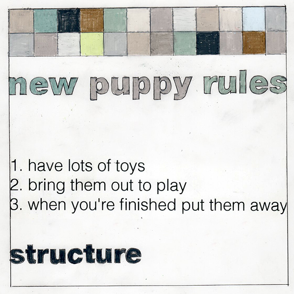 newpuppyrules_structure