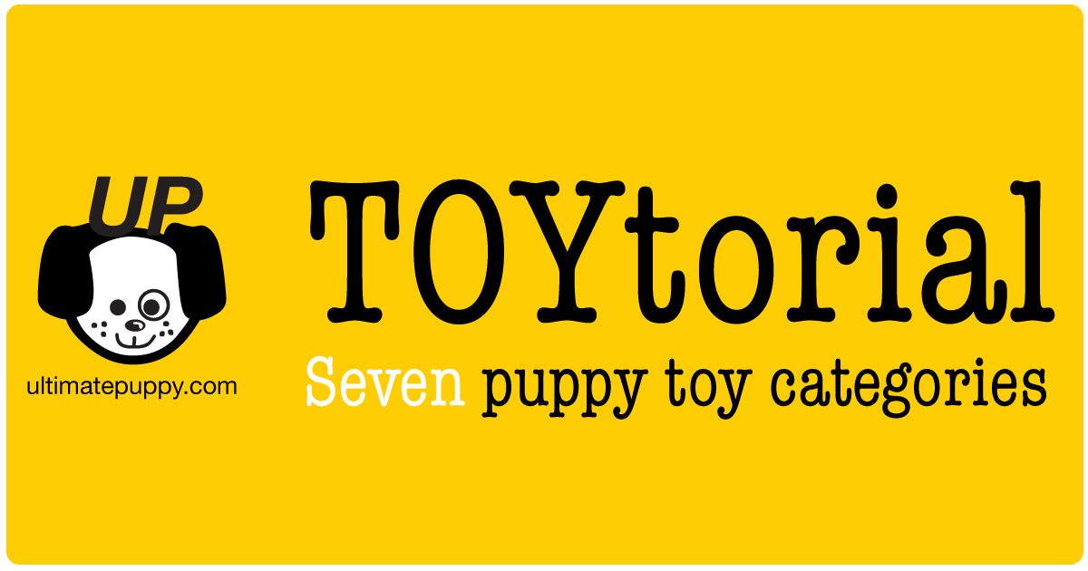 """This is a graphic that says """"TOYtorial, Seven puppy toy categories"""". It also has the ultimatepuppy.com & logo on it"""