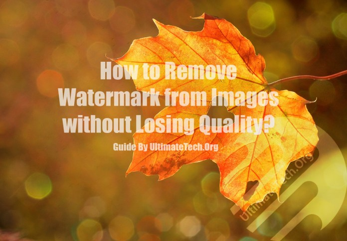 How to Remove Watermark without Losing Quality?