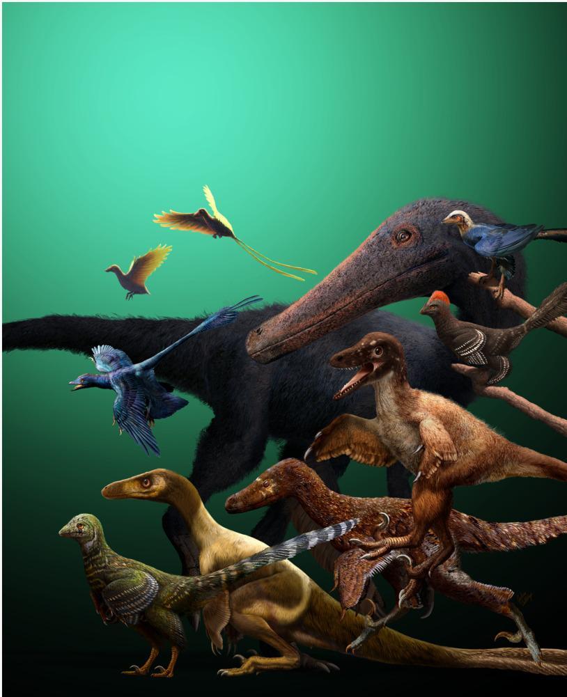 Il volo prima degli uccelli: antenati