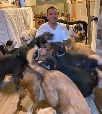 Ricardo Pimentel e i cani in casa