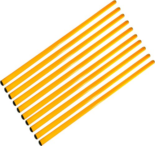Sport Pica 100 Set 10 Stecche Gialle 100 cm Adulti Unisex