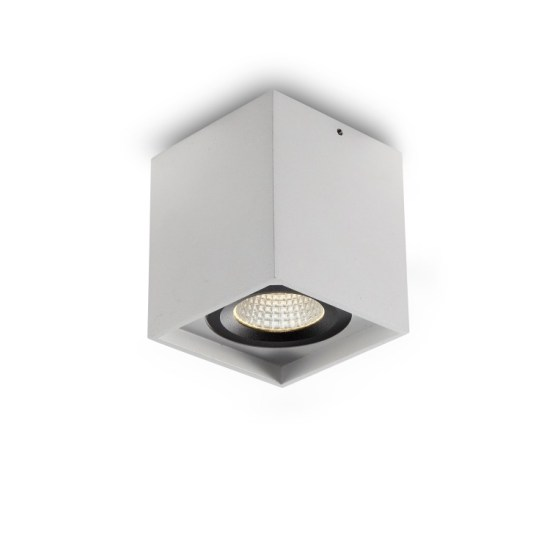 LBL173 surface mounted LED downlight
