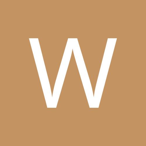 waldmaus