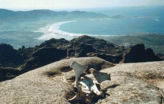 viajes_costa_da_morte_praia_carnota_dende_monte_o_pindo