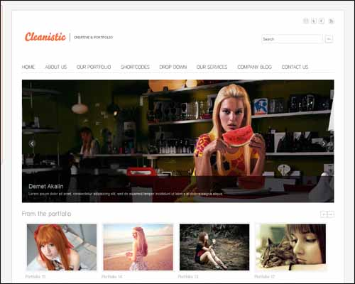 free-wordpress-theme-cleanistic