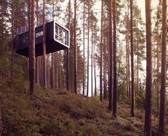 treehotel-2-934x