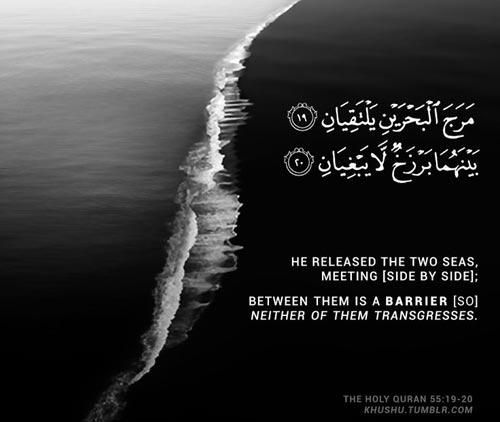 beautiful islamic quotes 1