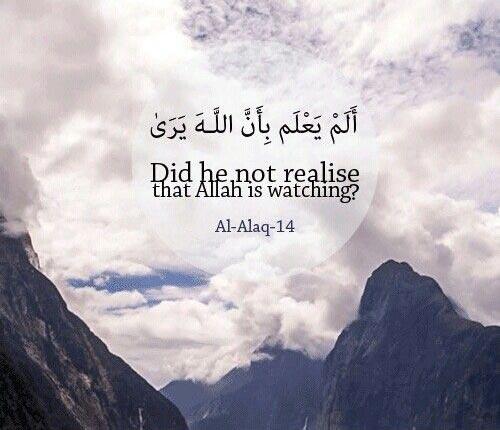Beautiful Islamic Quotes & Verses From Quran