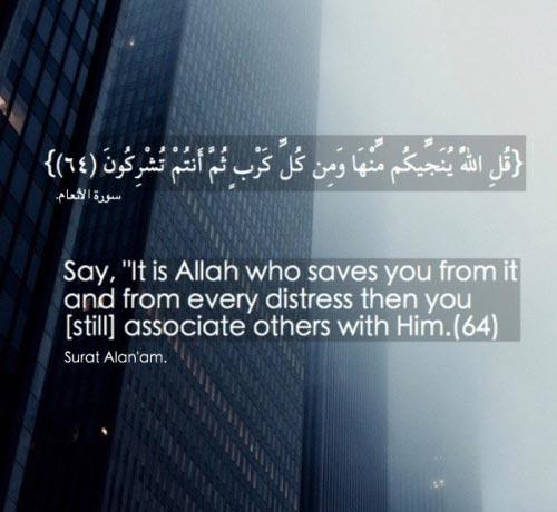 quranic verses 6