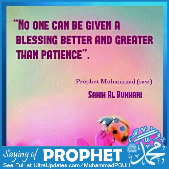 prophet muhammad saw quotes in english