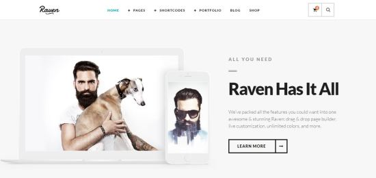 Raven - Minimal WordPress Theme