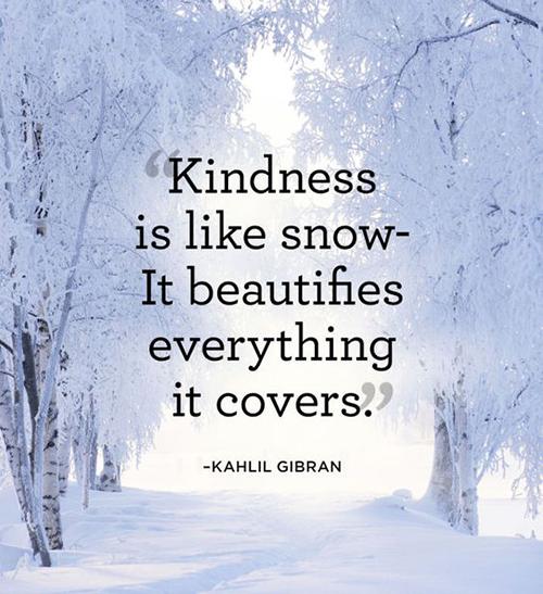 beautiful-wisdom-word