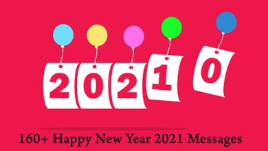 Photo of 160+ Happy New Year 2021 Message (Text SMS)