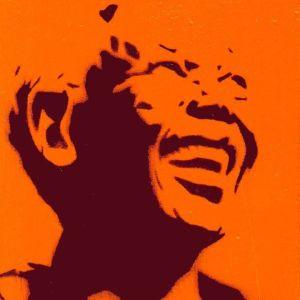 Nelson Mandela by Alex Hamilton