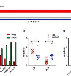 alterations in mrna 3 utr isoform abundance accompany gene expression changes in human huntington s disease [ 1322 x 768 Pixel ]