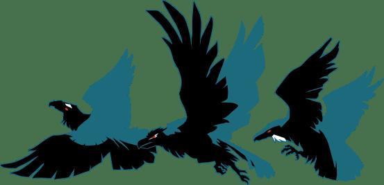 ravensheader