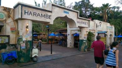 Harambe Market é inaugurado no Animal Kingdom | Um bilhete, por favor.