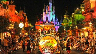 Um bilhete, por favor. Datas anunciadas para a Mickey's Not-So-Scary Halloween Party 2016 1