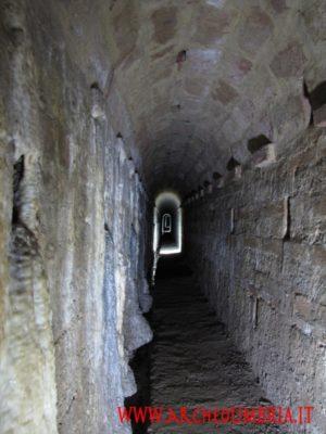 todi underground